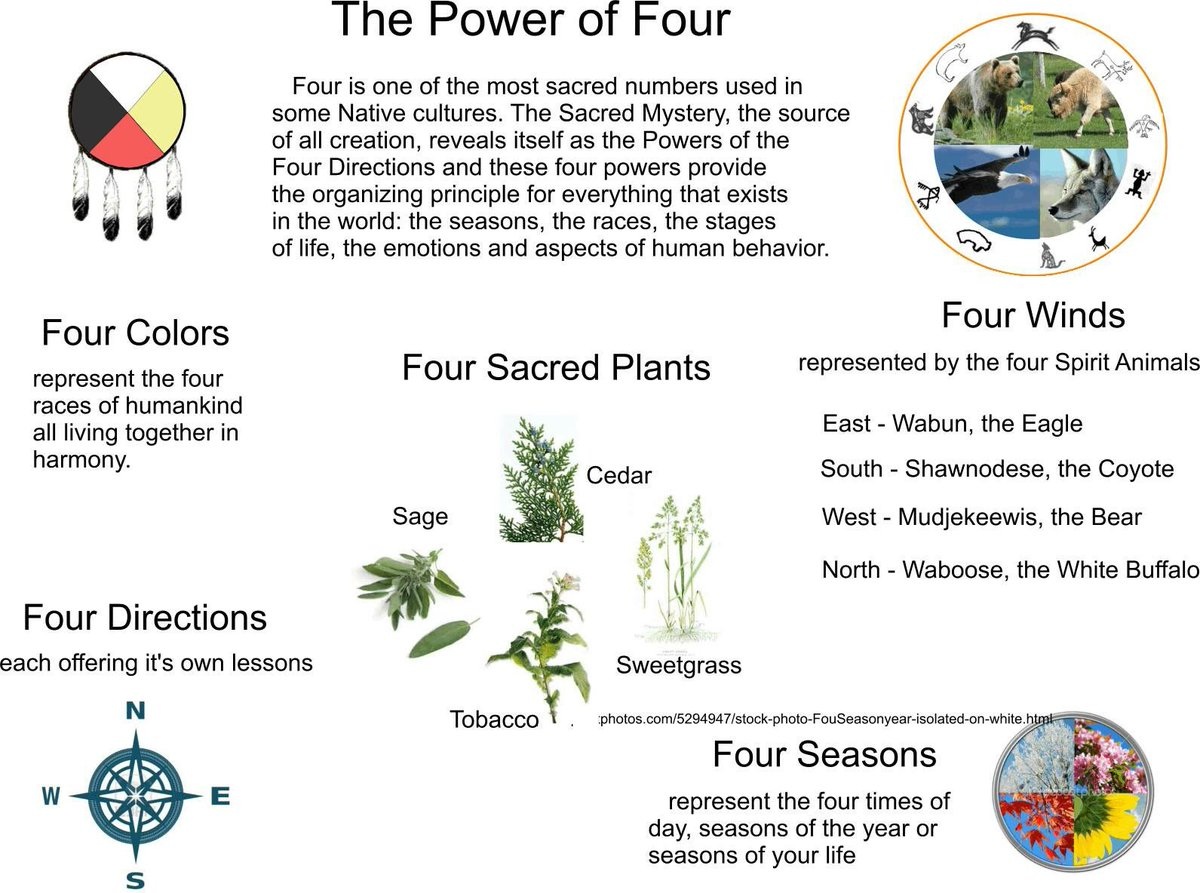 A Wolf On Twitter The Power Of Four Four Colors Four