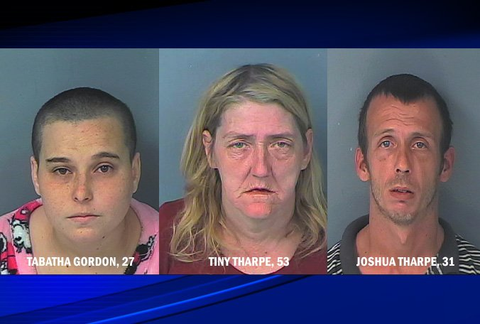 Three family members were arrested in #Hernando for reportedly abusing nearly a dozen dogs.