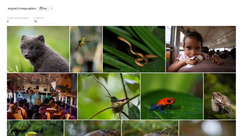 Image Gallery built with Angular 2, Node.js and GraphicsMagick