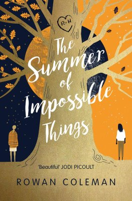 Image result for the summer of impossible things