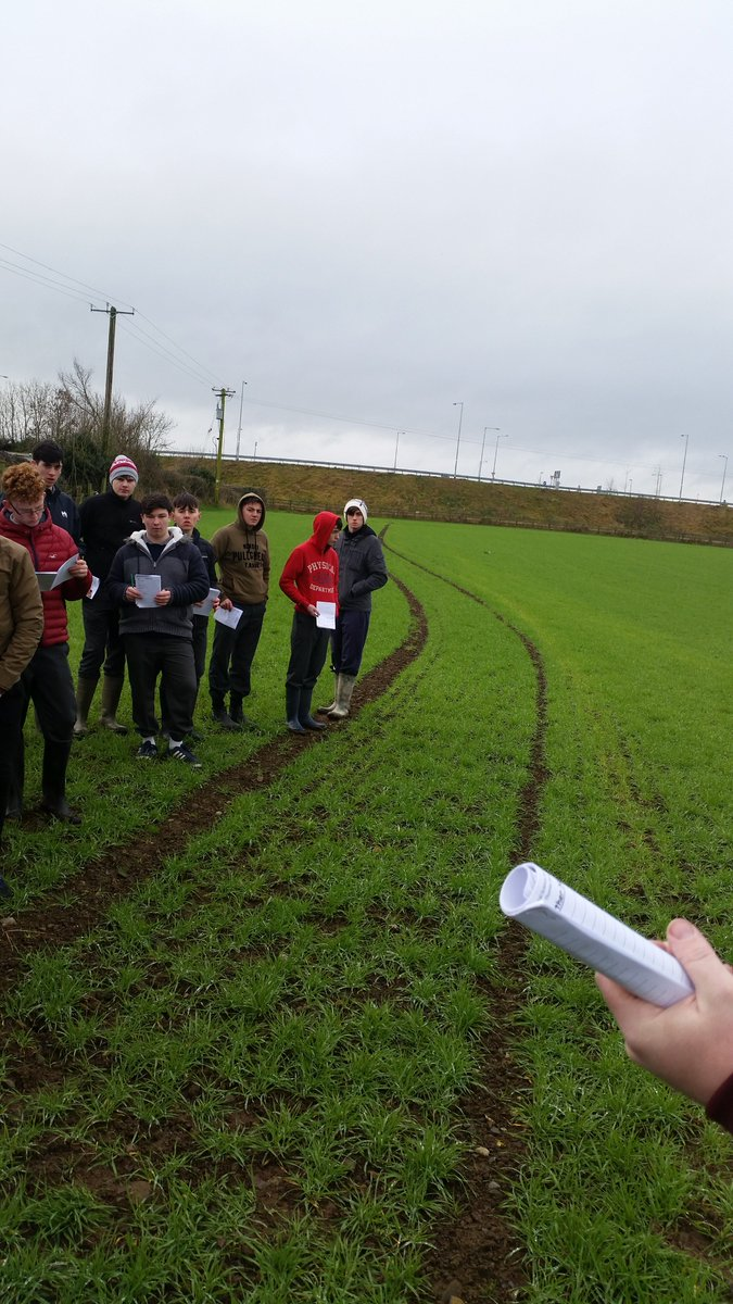5th Year Ag. Science students visited Flynn's Farm (beef & tillage) in The Downs Monday last for the practical aspect of their course.