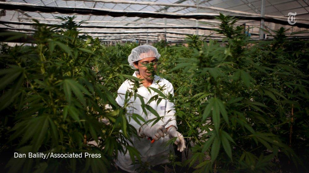 Israel took a major step toward officially decriminalizing recreational marijuana use.