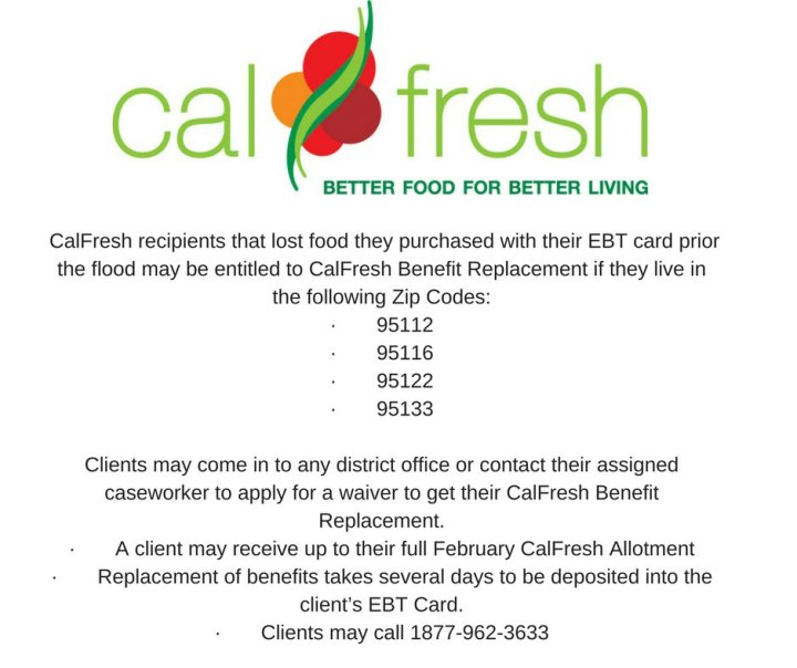 how to get a replacement ebt card