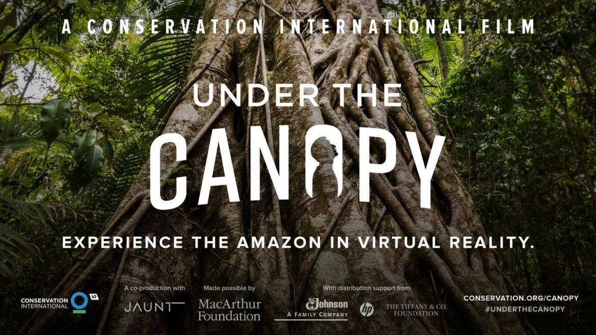 Take a trip into the Amazon without getting your feet muddy >>  #UnderTheCanopy
