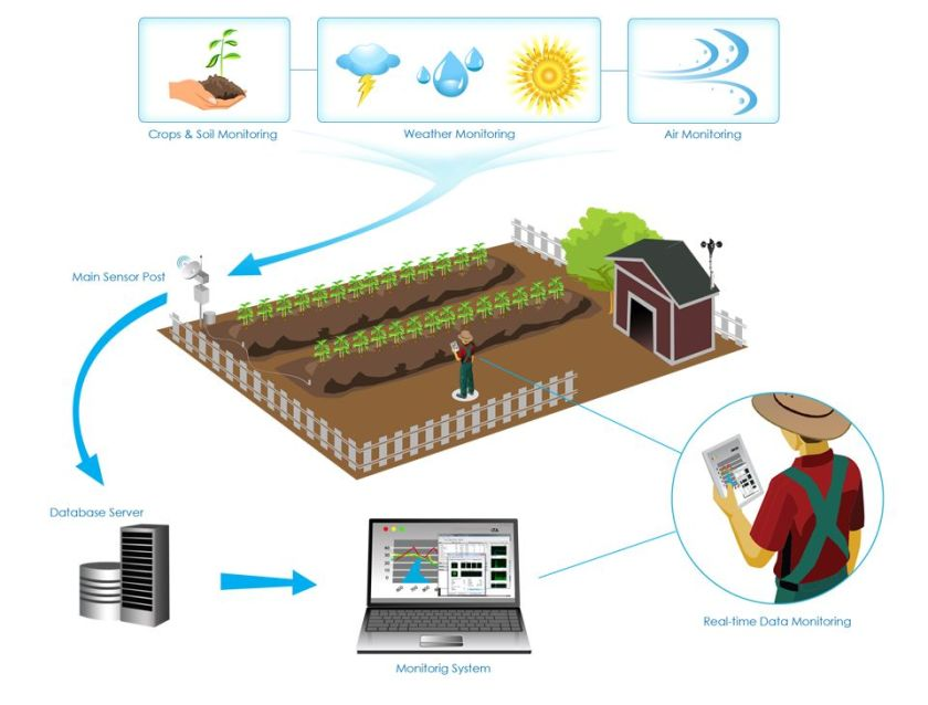 How #Sensors, #Robotics And #ArtificialIntelligence Will Transform #Agriculture