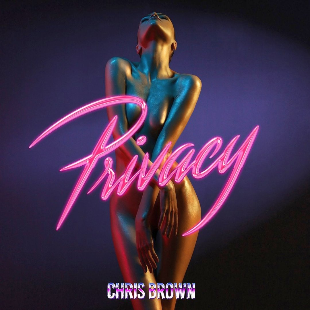 Chris Brown – Privacy Lyrics