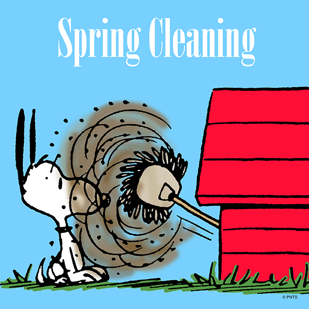 Image result for Snoopy spring cleaning