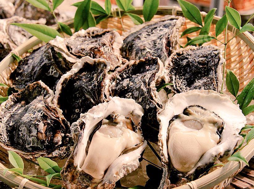 test ツイッターメディア - 【岩牡蠣(養殖)】  豊後水道を望む蒲江の海は 良質なプランクトンの宝庫。  ミネラル類豊富な夏が旬の岩牡蠣を 殻付きでお届けします。  =佐伯市岩牡蠣養殖協議会= https://t.co/JKMEZoMKRO https://t.co/itQPJmdjSl