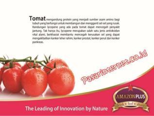 kandungan tomat