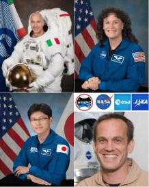 Image result for NASa NEEMO 20 crew