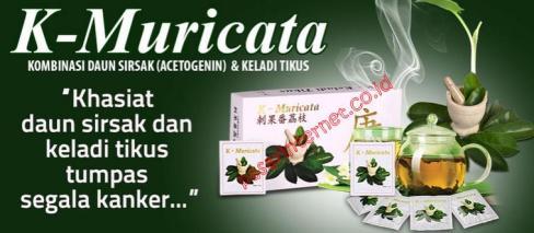 Khasiat K-Muricata