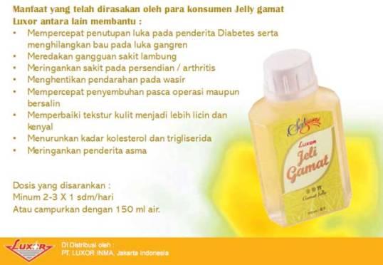 kandungan dan manfaat jelly gamat