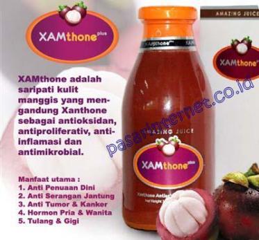 manfaat dan khasiat xamthone