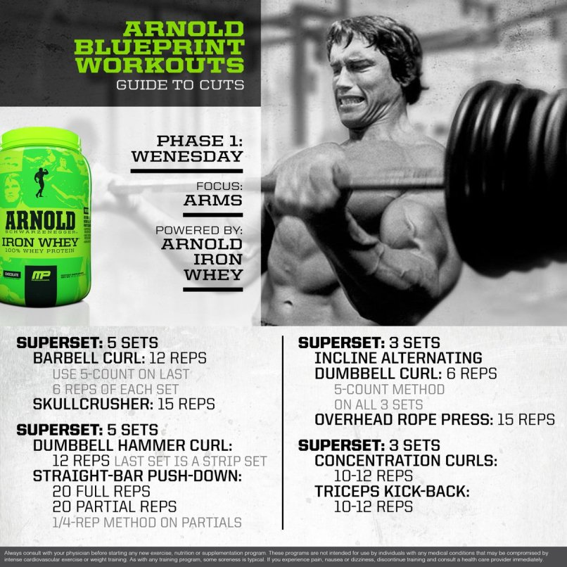 Arnold schwarzenegger workout plan blueprint yourviewsite musclepharm on twitter mp workout of the day arnold malvernweather Gallery
