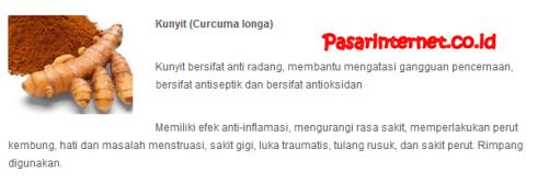 kandungan kunyit ( curcuma longa )dalam phytochi