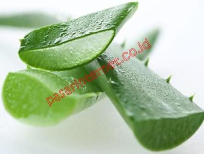 Aloe veraleaf gel (inner-heart filet)
