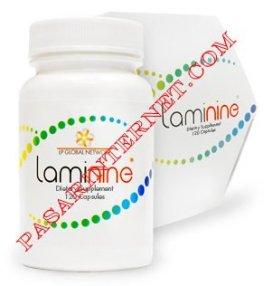 Laminine herbal untuk saraf