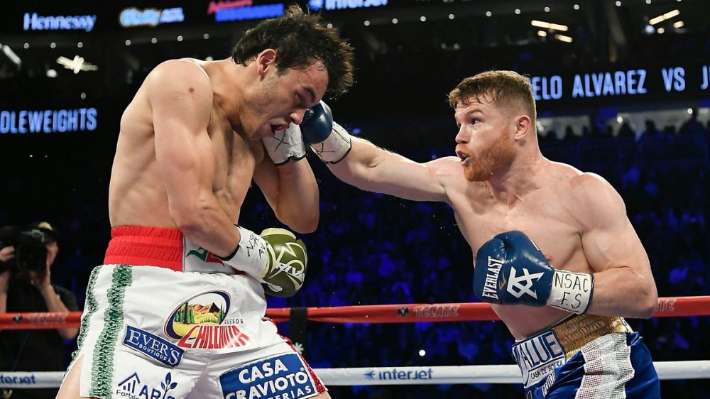 Canelo Chavez Jr Travel Packages