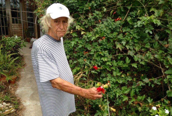 Clearwater's 'jungle man' worried about his front yard