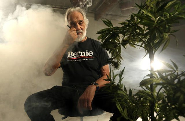 #TRENDING - Tommy Chong Slams Bernie Sanders' Campaign After Rally Snub