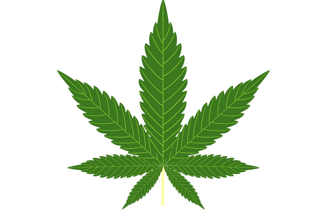 Ottawa is to Blame for Canadians' Confusion Over Marijuana #MMJ #law #canada #law
