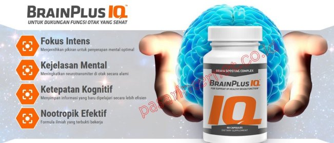 Brain Plus IQ