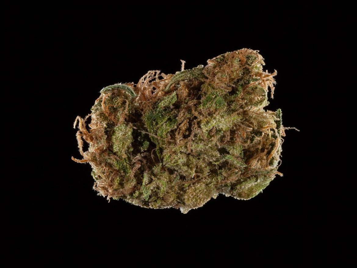 2016 Michigan Medical Cannabis Cup: Top 10 Sativa Flowers. TY @PSILabs for lab tests.
