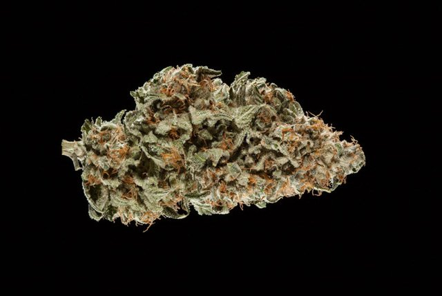 #WATCH 2016 Michigan Medical Cannabis Cup: Hybrid Flower Entries.