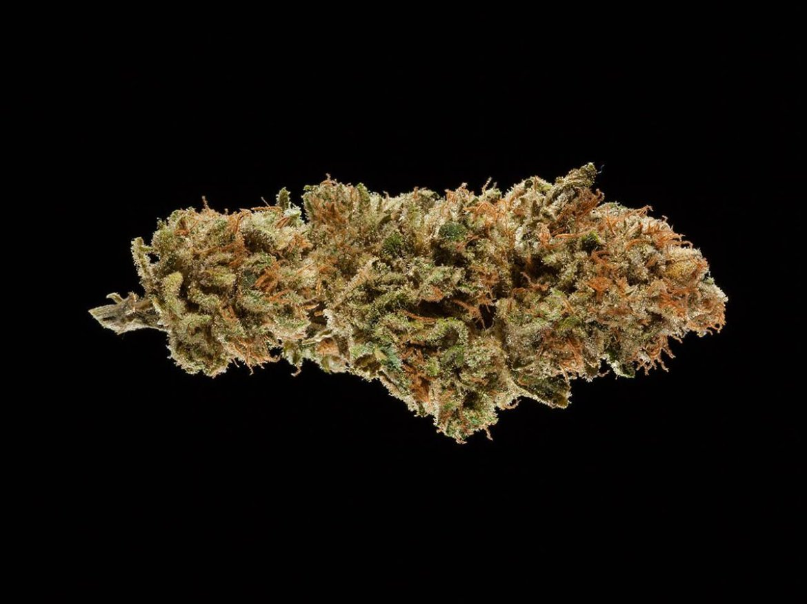 Natural #Painkillers. 2016 Michigan Medical #CannabisCup: Top 5 CBD Flowers.