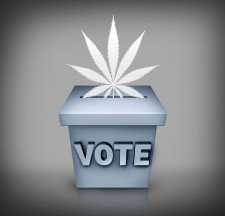 State-By-State Guide to Marijuana Ballot Initiatives - Check your state -  (from @mjbizdaily)