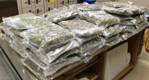 That's a lotta pot: Police say more than 900 pounds of weed found in Maryland van.