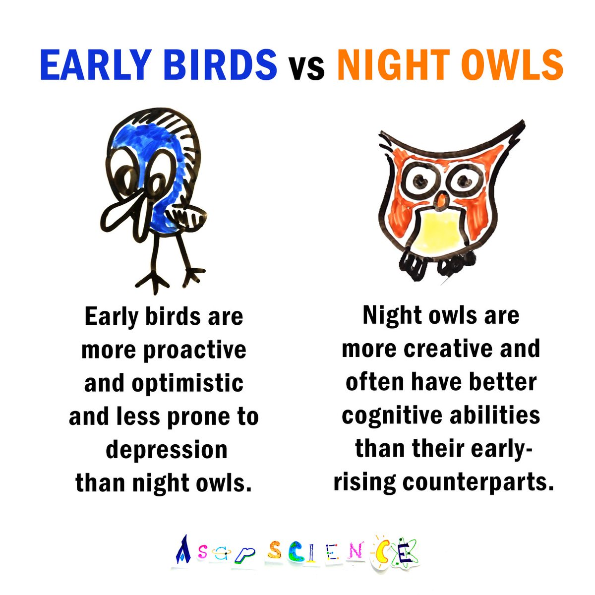 Are You An Early Bird A Night Owl Watch Our Vid To Learn
