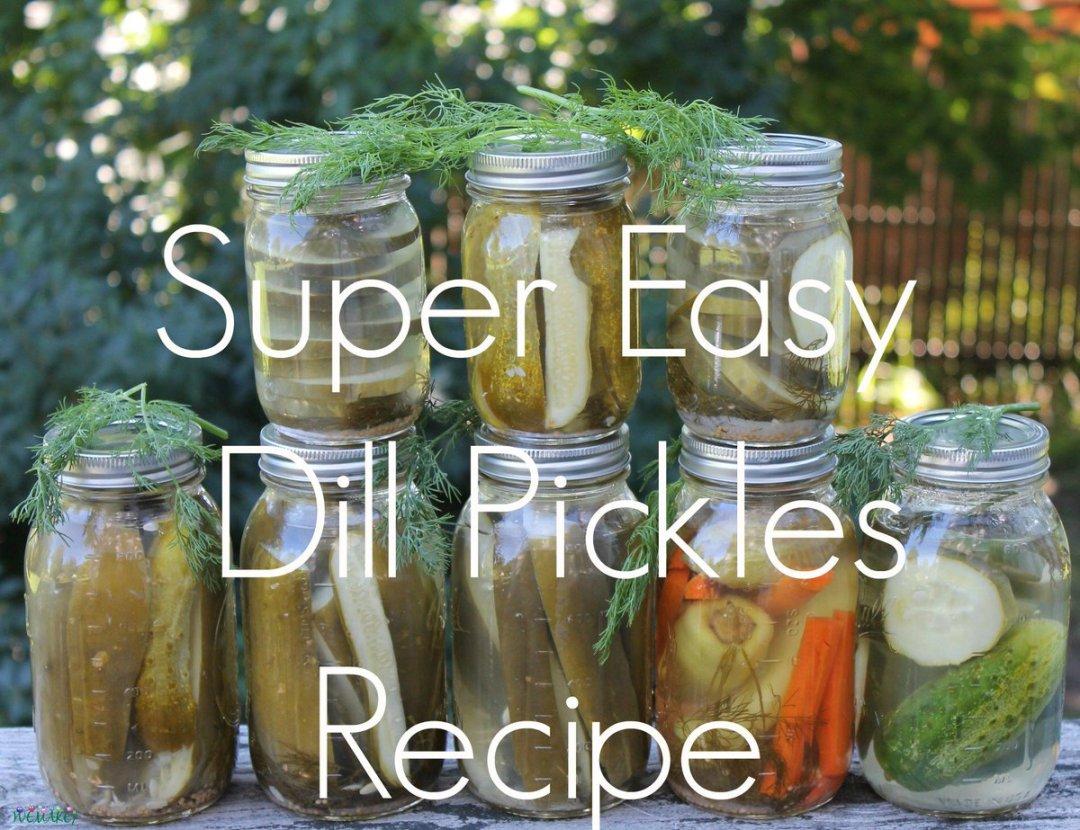 Super Easy Dill Pickles Recipe.