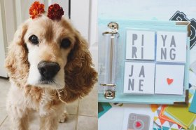 DIY Dog Scrapbook: Make the most of all those pup photos on your phone