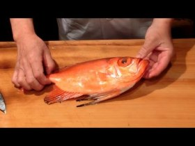 Healthy - Sashimi Fish Alive Japanese - Videos Food Japanese - ://