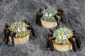 Krbis- und Spinnen-Cupcakes: