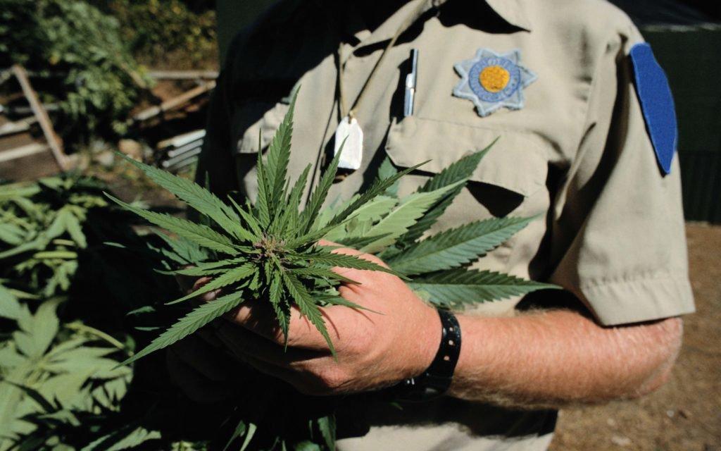 Congress Wants the #DEA to Prove Marijuana Eradication Program Is Necessary.
