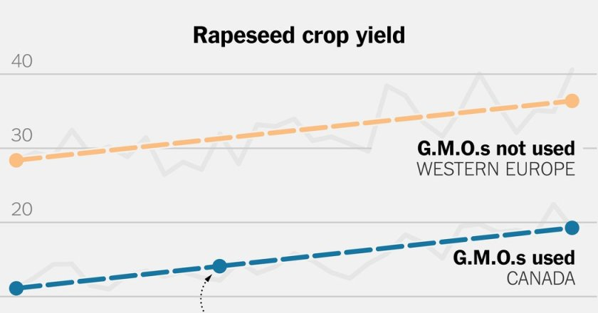 Broken Promises of Genetically Modified Crops #FinTech #GeneticallyModifiedFood(GMOs)