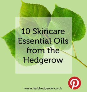 10 Beauty Essential Oils from the Hedgerow skincare herbalism