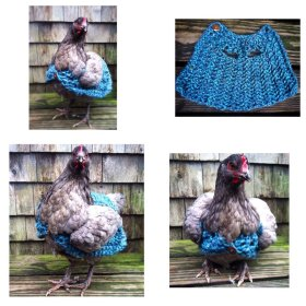chickens pets gifts holidays shopping sale craftshout etsychaching etsymntt rt s.