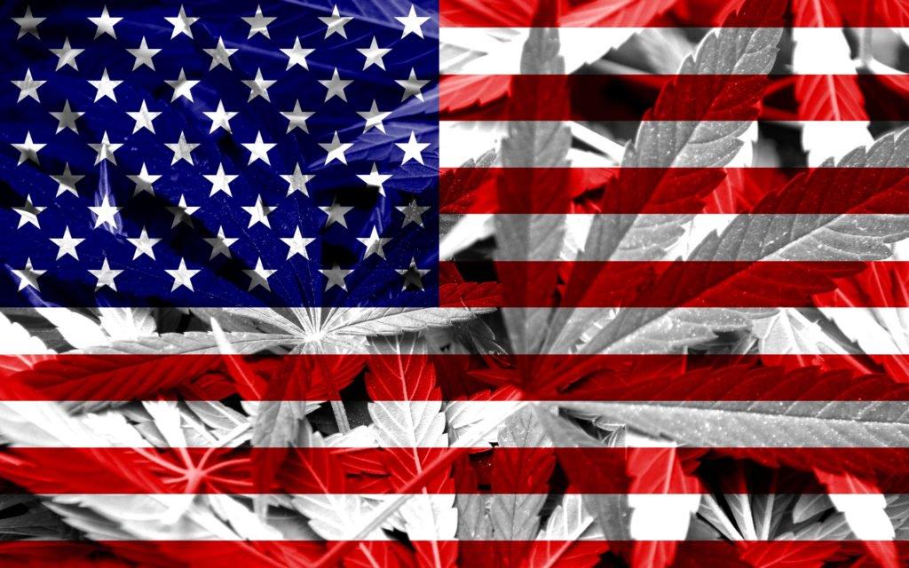 #READ Democratic Senate Control Could Be Great for Marijuana Reform .