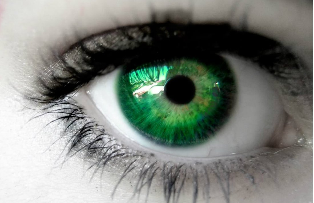 Smoking Weed May Help You See Better in the Dark #eyes #vision #MMJ #nightvision
