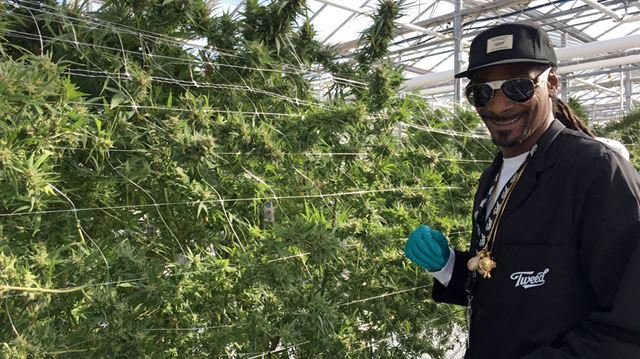 Snoop Dogg Just Toured the World's Largest Marijuana Greenhouse. Here's Why!