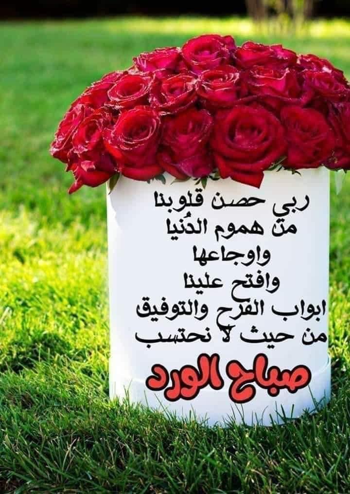بسم الله الرحمن الرحيم السلام عليكم ورحمه الله وبركاتة ابحث