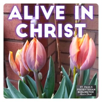 Image result for SPRING ALIVE IN CHRIST""