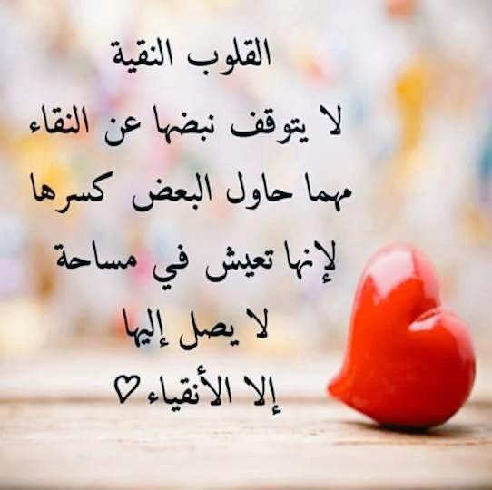 أعظم ما قيل On Twitter عزة النفس لیست لسانا ساخرا ولا