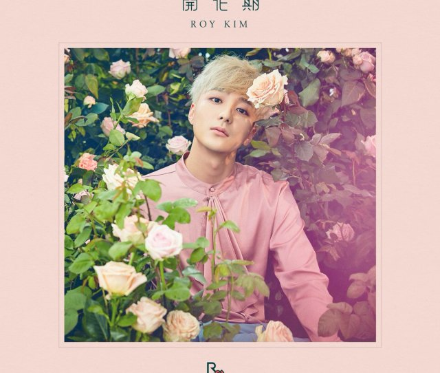 Album Review Roy Kim Blossom Https T