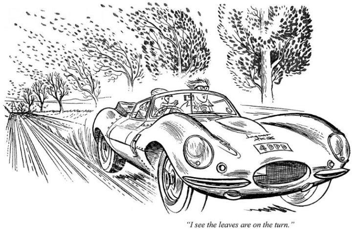 cartoon pictures jaguar cars