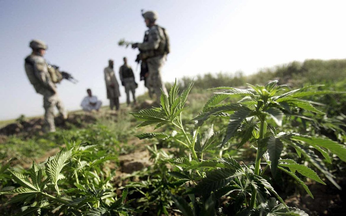 Duty. Honor. Country. Weed? U.S. Army to Grant More Marijuana Waivers.