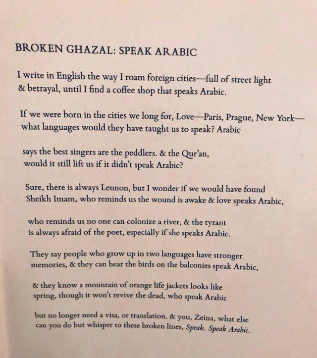 """Zeina Hashem Beck زينة هاشم بك on Twitter: """"Happy UN Arabic Day"""